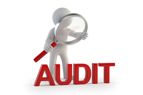 Looking for an Auditor